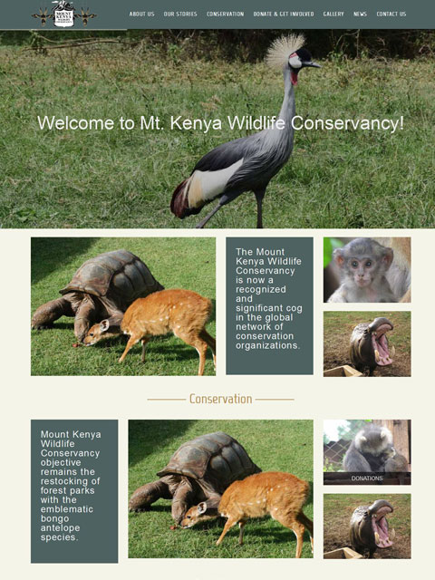 Mount Kenya Wildlife Conservancy